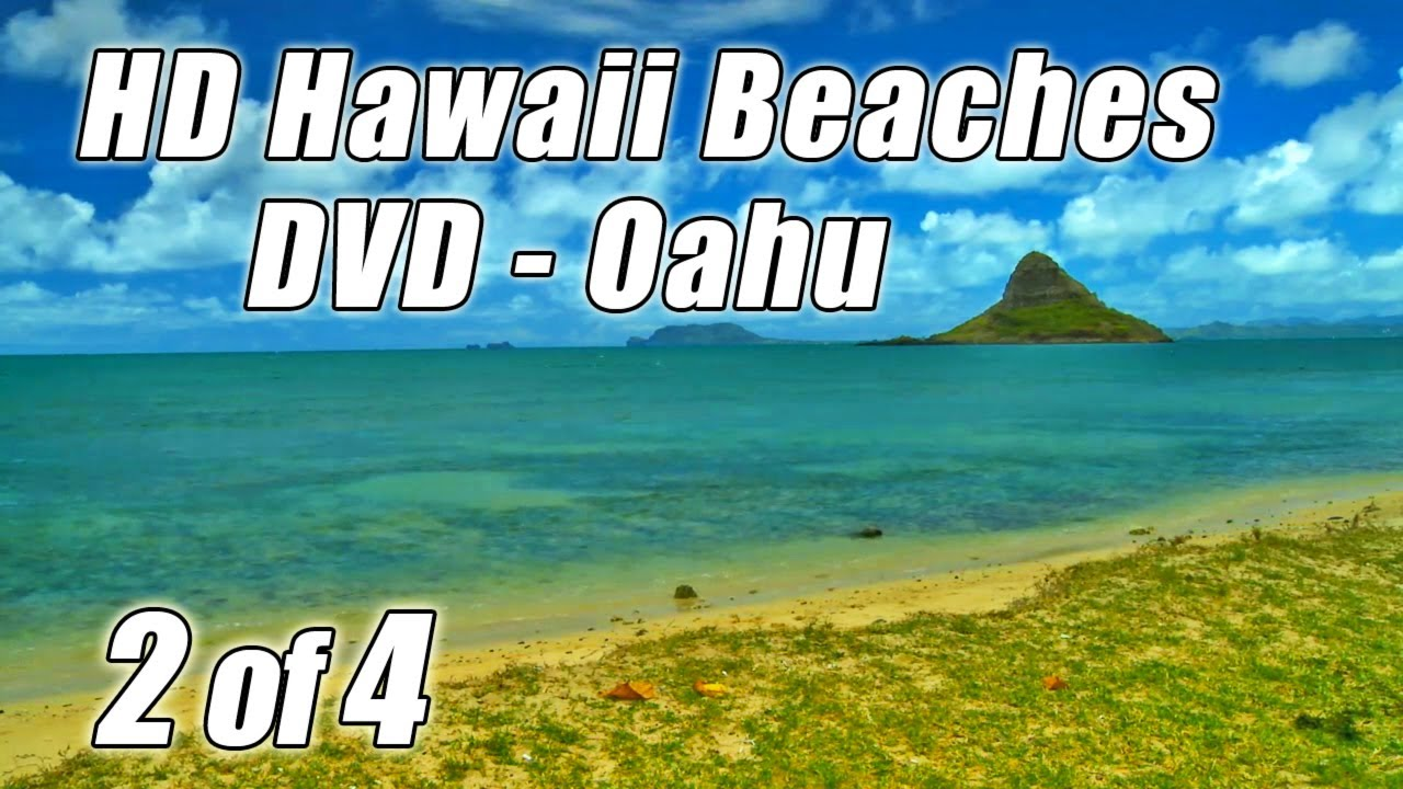 Tropical Island Beach Ambience Sound: OCEAN SOUNDS #1 Best Relaxing Oahu Beaches Wave Sounds