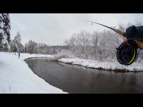 Bobber Down! Winter Steelhead Fishing