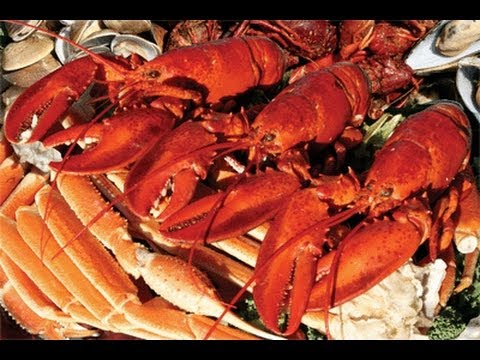 lighthouse lobster feast buffet tour orlando florida rh youtube com angels seafood buffet orlando fl seafood buffet near me orlando fl