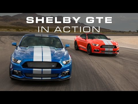 Shelby GTE In Action