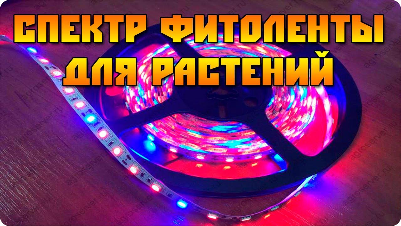 LED светильник для аквариума 51см с пультом Минск +375 29 648 71 .
