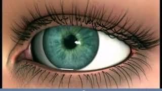 gyenge látás mit diagnosztizál