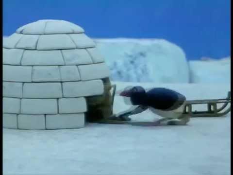 Download Episode no.14 : Pingu Builds an Igloo