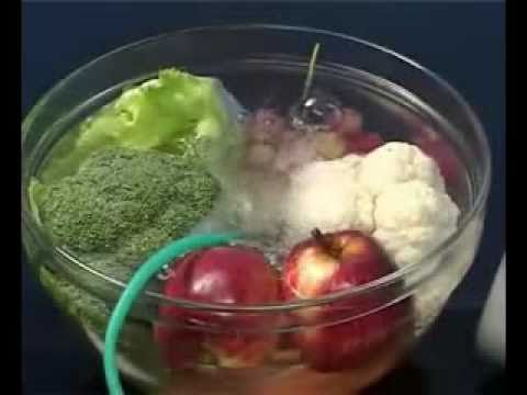 OZONE Food and Water Sterilizer - Sterilize, Disinfect, Deodorize and Preserve Freshness