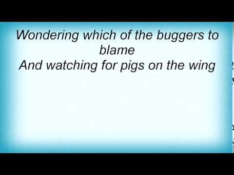 Roger Waters - Pigs On The Wing Lyrics