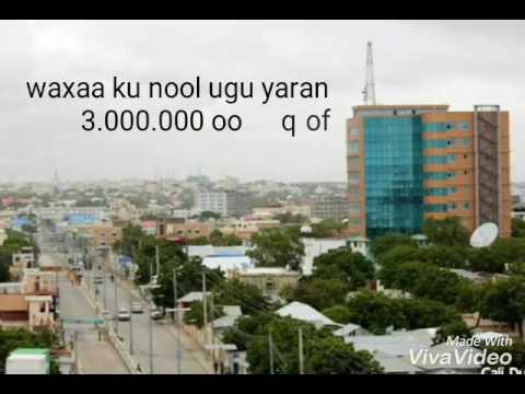 Top 10 biggest cities in somalia 2017