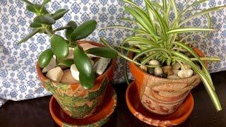 DIY-Lepení ubrousku na květináče, sázení kytek, vysypání kamínky.
