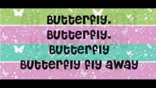 Butterfly fly away- Miley cyrus karaoke (có bè)