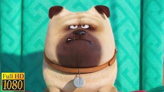 Тайная жизнь домашних животных (2016) - Один дома (1/10)|Семейные Мультфильмы