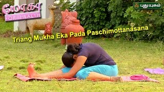 Tiryam-Mukha Eka-Pada Paschimottanasana   யோகா For Health   12/05/2017