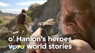 Spotting dino bones on Cow Island - O'Hanlon's heroes