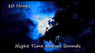 10 Hours - Night Time Nature Sounds (Katydids and Crickets)