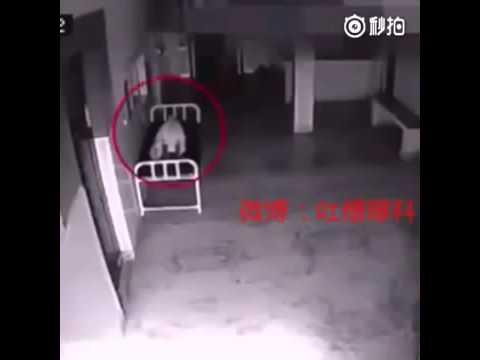 Polémico video del alma que sale de un cuerpo arrasa en youtube