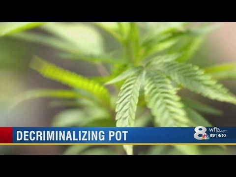 None - The City of Sarasota has decriminalized marijuana