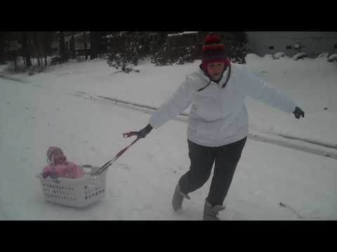 Your Greatest Asset-Your Intelligence and Your Homemade Sled