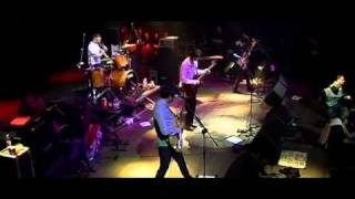 Babyshambles - Side Of The Road (live)