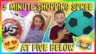 5 MINUTE SHOPPING SPREE AT 5 BELOW | We Are The Davises