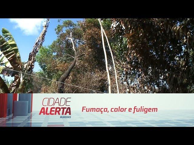 Fumaça, calor e fuligem: incêndios em mata preocupam moradores da Jaqueira