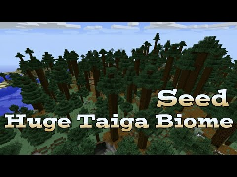 minecraft-pe-|-huge-taiga-biome-seed!!