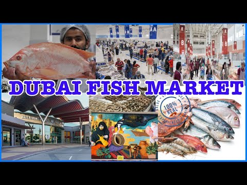 Dubai Modern Fish Market | Waterfront Market Deira Dubai UAE | Lian & Liam Family Vlog