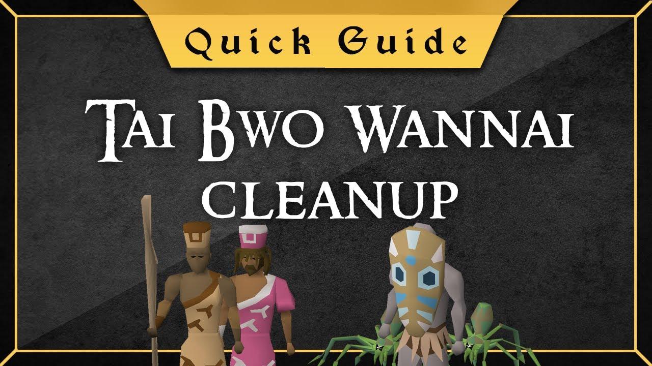 [Quick Guide] Tai Bwo Wannai Cleanup
