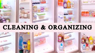 SATISFYING FRIDGE CLEANING AND ORGANIZATION | REFRIGERATOR CLEANING & ORGANIZING | CLEAN WITH ME