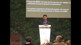How International Results Based Finance Can Help Indonesia to Reduce Deforestation Part 1