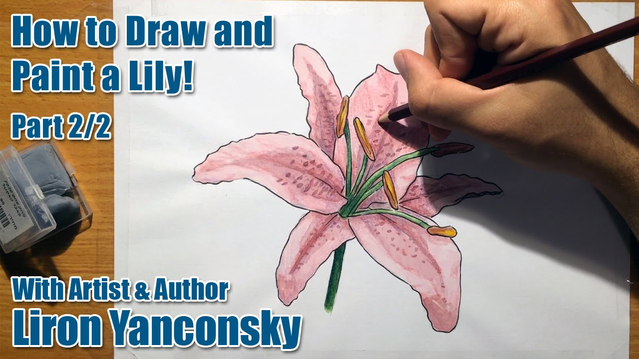 Watercolors for beginners how to draw and paint a lily part 22 watercolors for beginners how to draw and paint a lily part 22 youtube izmirmasajfo