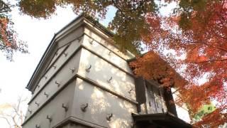 秋の旧朝倉家住宅に行ってきました -紅葉の中で茶会-