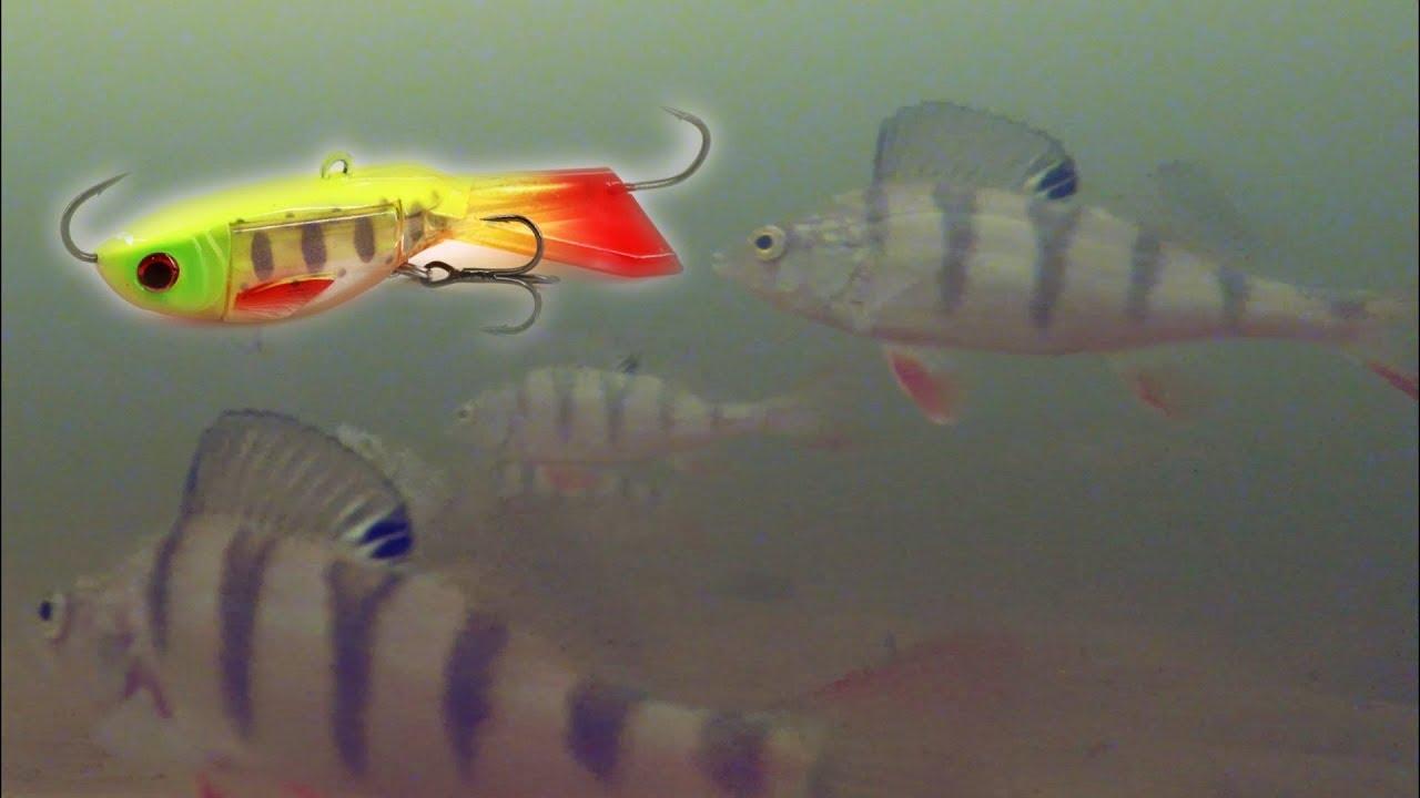 Окунь VS балансир Подводная съемка