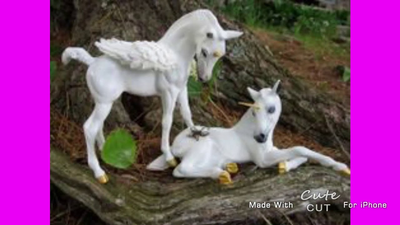 30+ Trends Ideas Cute Unicorn Pictures In Real Life ...