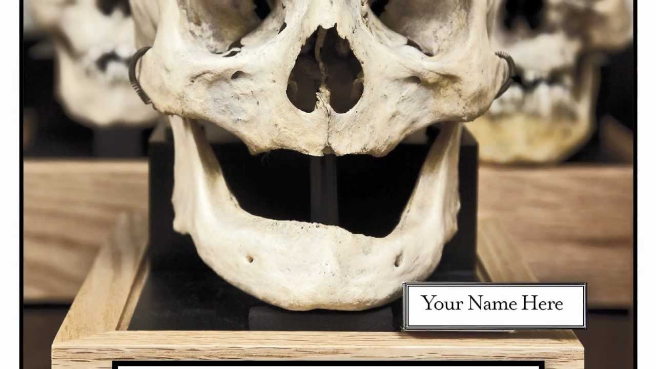 11 Weird (But Awesome) Things at the Mütter Museum | Mental Floss