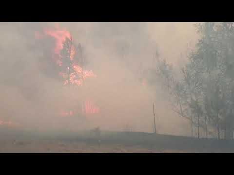 CXID.info: Пожар. Северодонецк. Волчье и Смоляниново часть #2 - Випадково