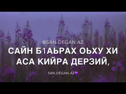 Х1умма дац ( Чеченская песня)