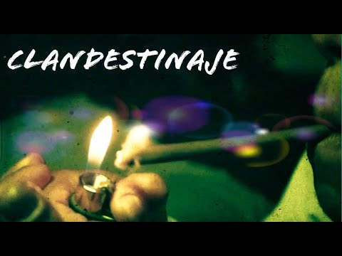 Clandestino - CLANDESTINAJE #2020 (Venezuela )