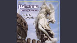 Palestrina: Motets: Confitebor tibi, Domine
