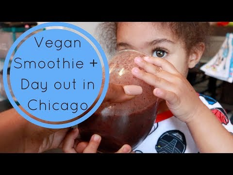 Vegan Smoothie + Family Day Out In Chicago