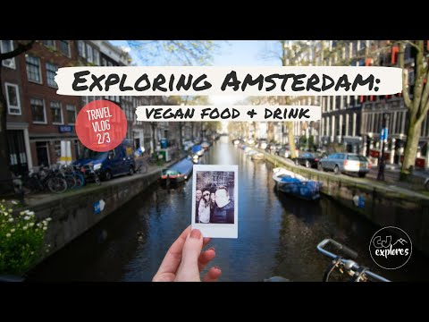 Exploring Amsterdam's VEGAN food and Nightlife | Amsterdam Travel Vlog 2/3