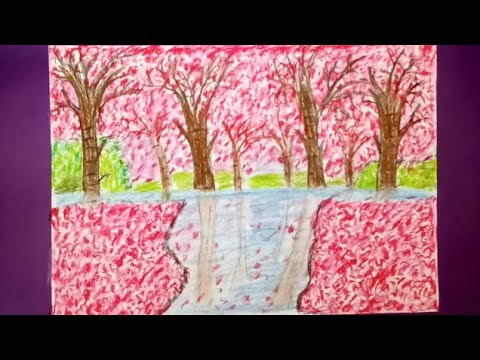 SPRING SEASON DRAWING||PAINTING WITH CHERRY BLOSSOM TREES||OIL PASTELS DRAWING