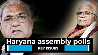 Watch l Haryana assembly polls: Key issues on which election will be fought