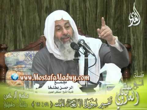 الشيخ مصطفي العدوي محاضرات Hqdefault