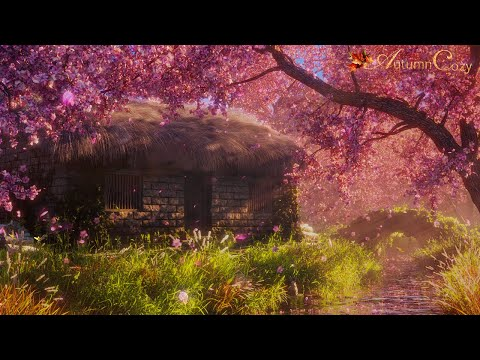 🌸✨SPRING AMBIENCE WITH CHERRY BLOSSOMS: Stream Sounds, Spring Day Sounds, Splashing