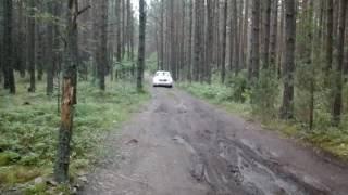 Додж калибр едем по лесу,проходимость на высоте