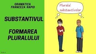 Substantivul (formarea pluralului) - Gramatica franceza (2018)