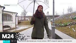 """""""Утро"""": высокая влажность ожидается в столице 3 марта - Москва 24"""