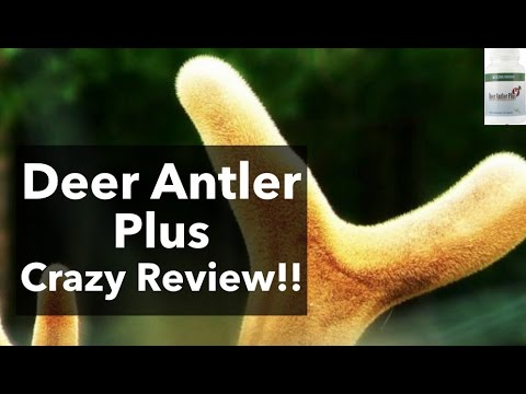 Deer Antler Plus Review How To Increase Igf 1 Naturally Youtube
