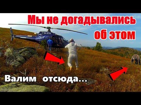Такого мы не ожидали! Повсюду медведи - валим отсюда/В Алтайскую тайгу на вертолетах/Телецкое озеро