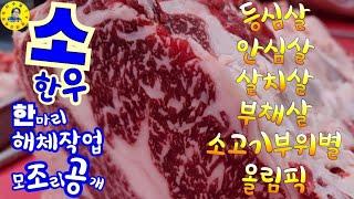 인천 축산물시장 소고기/돼지고기 가격, 한우 해체작업,…
