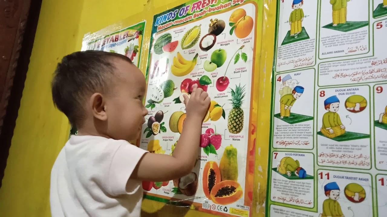 Belajar nama buah | anak 2 tahun belajar buah buahan ...