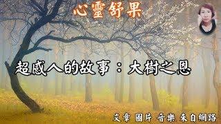 心靈舒果陳玉珠-超感人的故事:大樹之恩